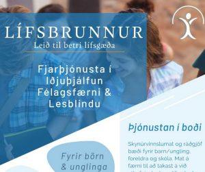 Fjarþjónusta – Bæklingur 1